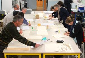 Séance de restauration des herbiers dans la salle pédagogique du muséum d'histoire naturelle Jacques de La Comble à Autun.