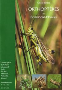 Orthoptères en Bourgogne-Morvan